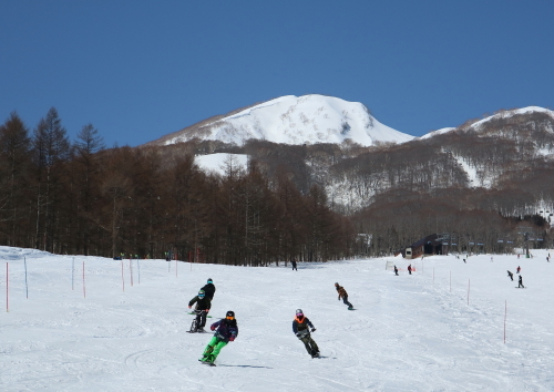 IMG3096杉ノ原web.JPG